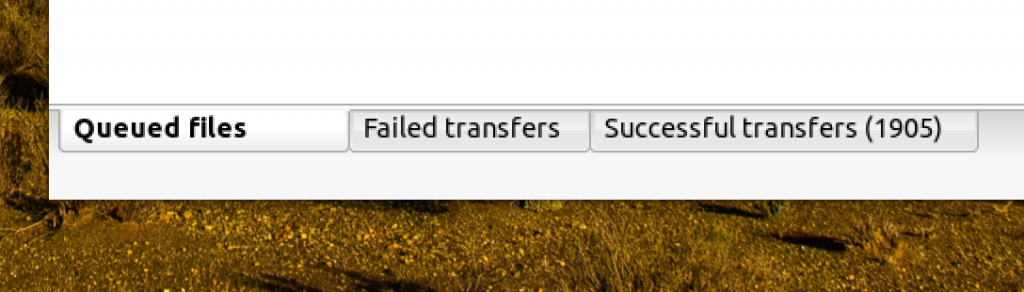 Screenshot showing no queued files, no failed transfers and 1905 successful transfers